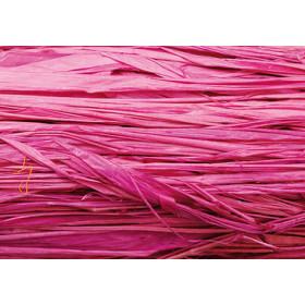 8536279 Raffia 20g Fuchsia