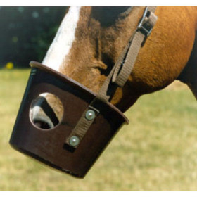 S75P Muzzle Light Brown Pony Size